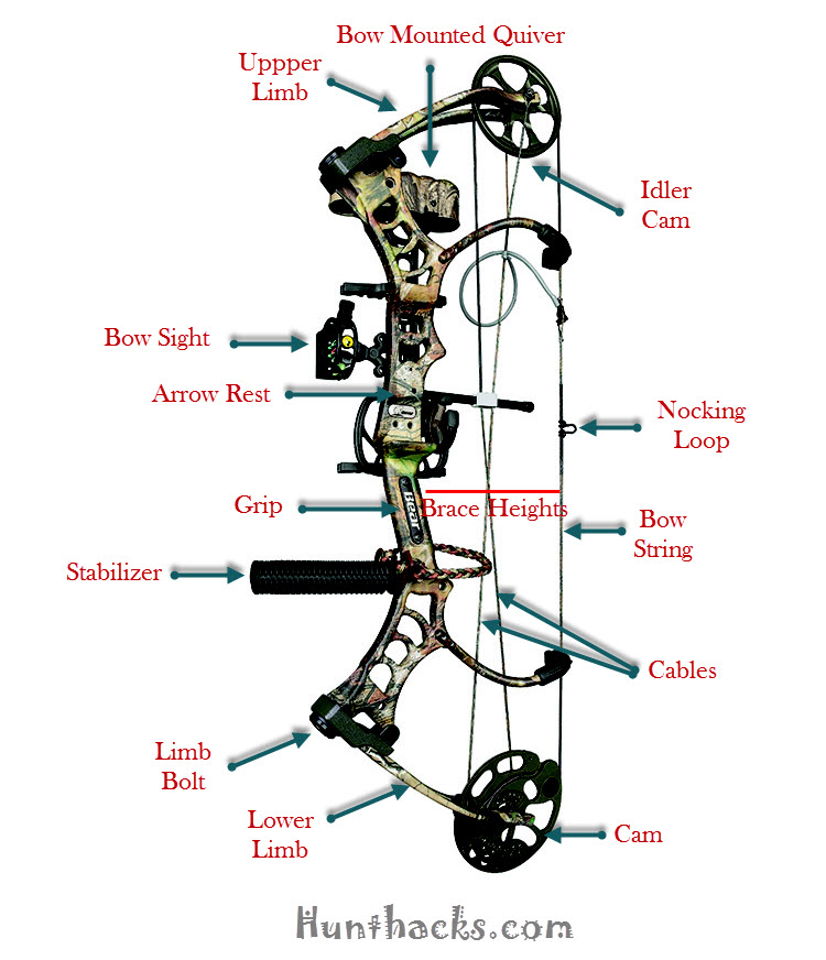 Best Compound Bow Reviews 2017 – Top Rated For The Money
