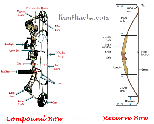how to shoot a compound bow. Black Bedroom Furniture Sets. Home Design Ideas