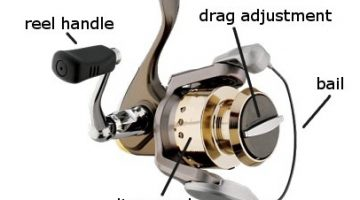 Parts of Spinning Reel with Diagram