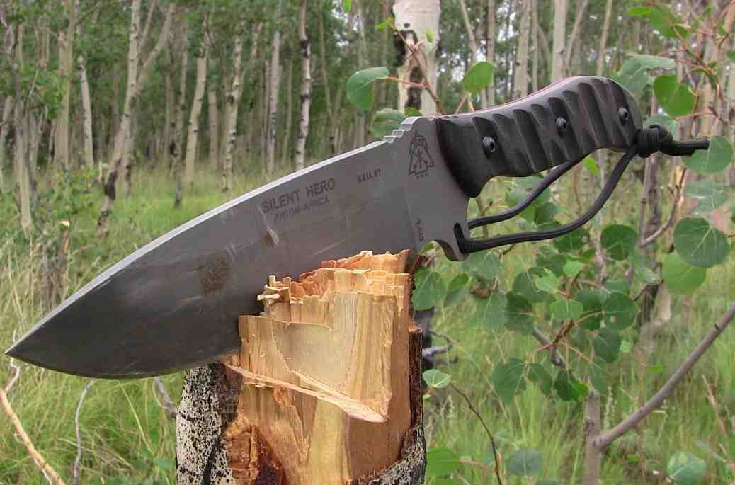 Stay Sharp Stay Right Camping And Survival Knives