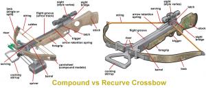 Compound vs Recurve Crossbow