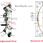 Differences between the Recurve vs. Compound Bow