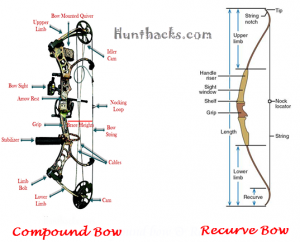 compound bow and recurve bow difference