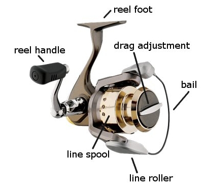 Image result for Spincast reel reel diagram
