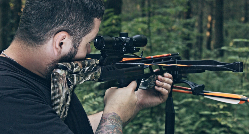 Choose the best crossbow