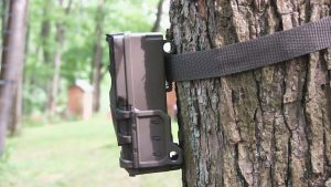 Moultrie A-20 Mini Game Camera Hang tree