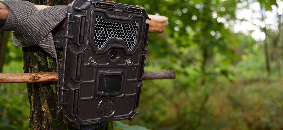 How to use trail camera
