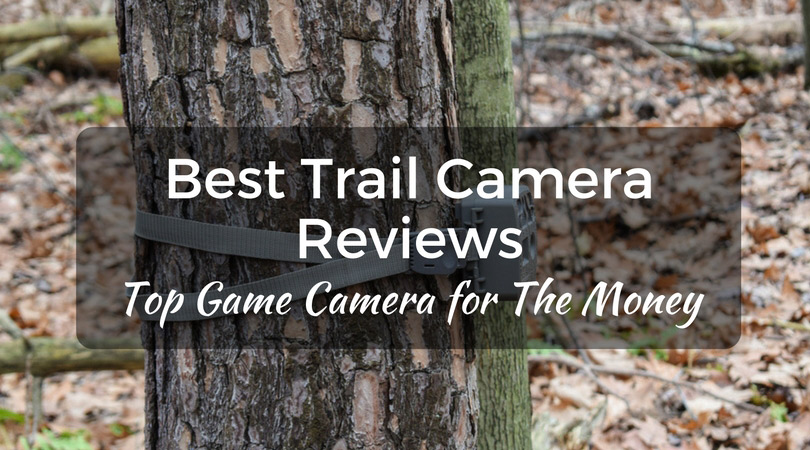 Best Trail Camera Reviews 2017 - Top Game Camera for The Money