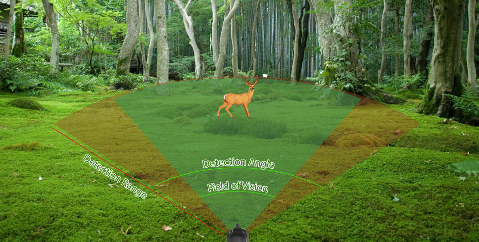 Trail Camera Detection Circuits