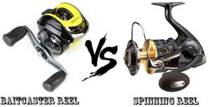 Baitcaster vs. Spinning Reel