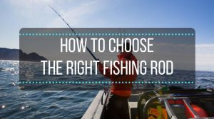 how to choose the right fishing rod