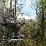 Best Climbing Tree Stand Reviews for 2017 – Which is for bowhunting?