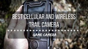 Best cellular wireless trail camera