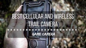 Best cellular wireless trail camera