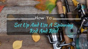 How to Set Up and Use a Spinning Rod and Reel