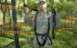 Using a Climbing Treestand and Safety Harness