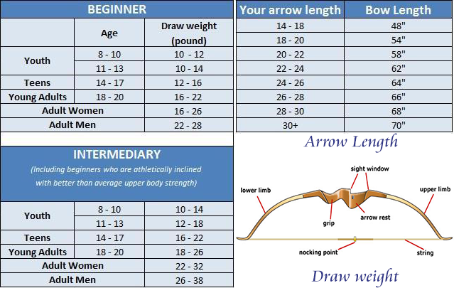 bow length draw weight in recurve bow