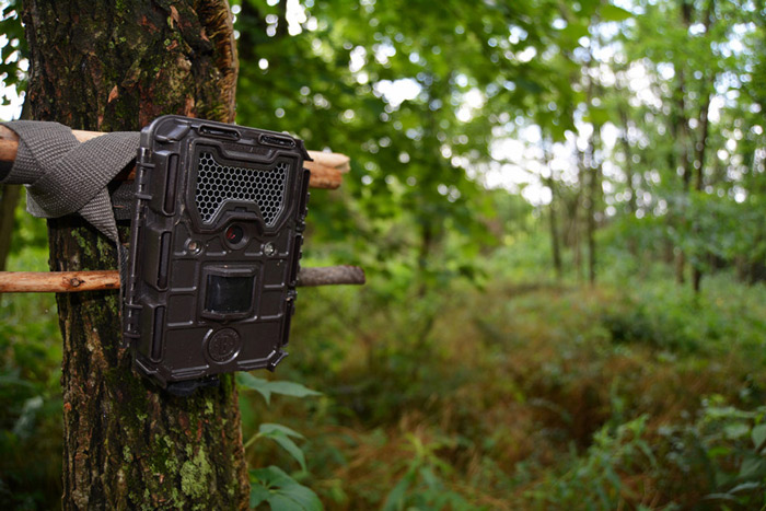 Best Trail Camera