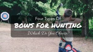 Types Of Bows For Hunting